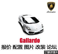 新锐车网兰博基尼盖拉多 Gallardo
